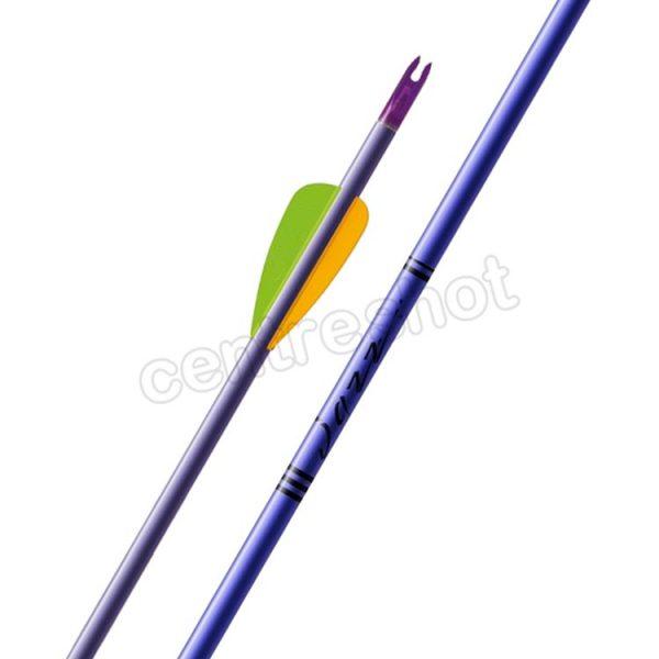 Easton Jazz Arrows