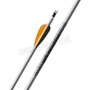 Easton XX75 Platinum Plus Arrows